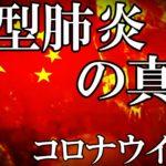 【武漢】新型コロナウイルスの真実(最新,真相,倒れる,症状,日本,生物兵器,都市伝説)[令和TV闇情報]